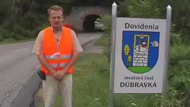 Slovenská anomália