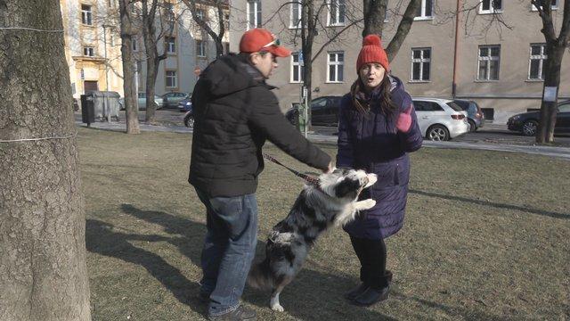 Ako sa správať, keď chceme pohladkať cudzieho psa