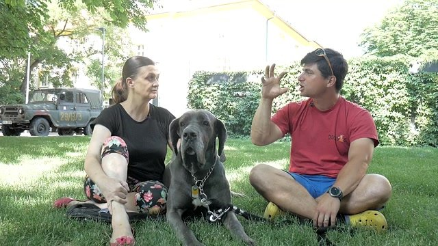 Ako zvládnuť psa, ktorého štekanie prekáža susedom